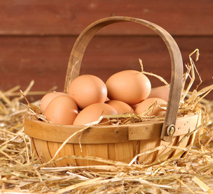 Fresh eggs from your henhouse